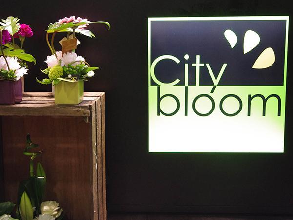 Boutique City Bloom